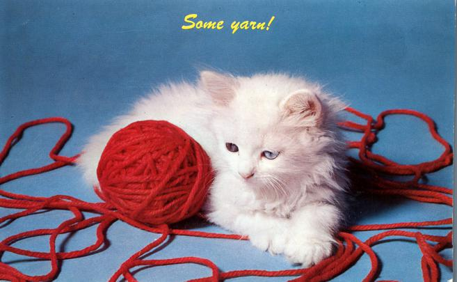 Some Yarn - Cute Kitten - Cat - pm 1950 at Otter Lake NY