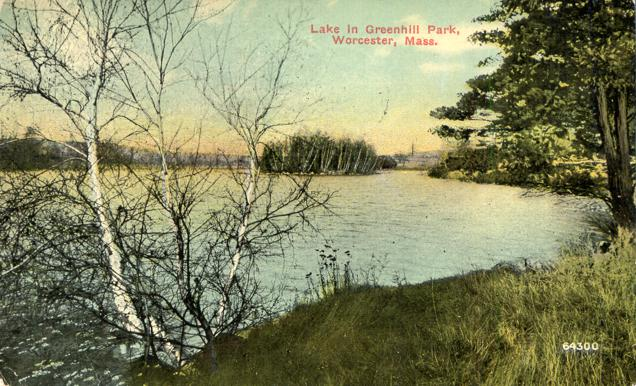 Lake in Greenhill Park - Worcester, Massachusetts - pm 1910 - Divided Back