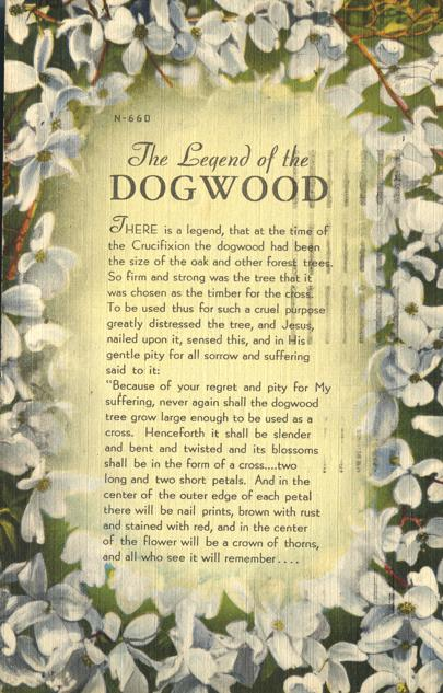 The Legend of the Dogwood Tree - Linen Card