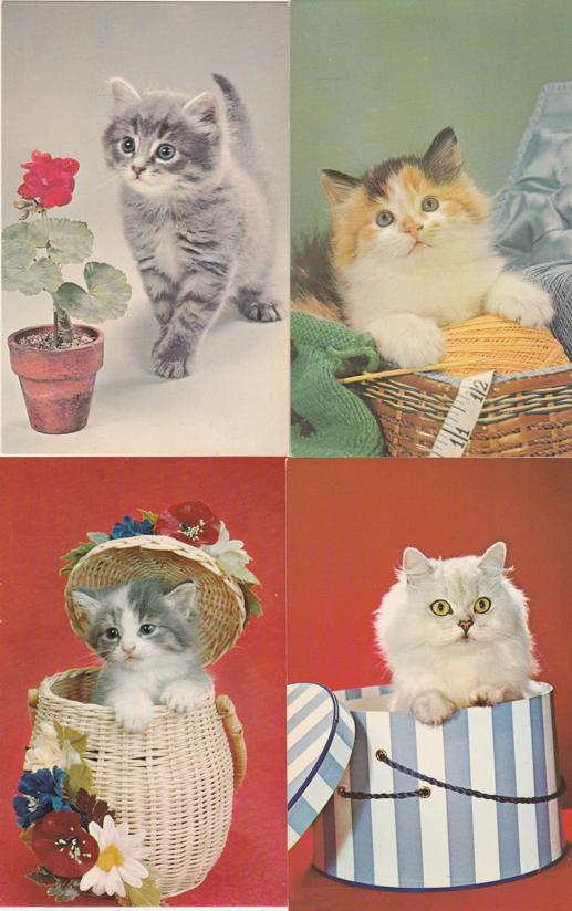 (4 cards) Cute Kittens Cats - Flowers Baskets Hats