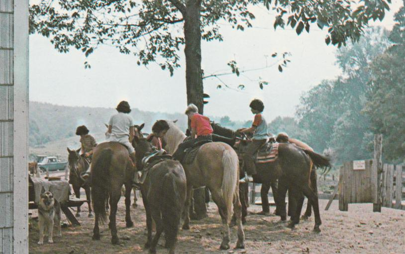 Campers and Horses Circle C Trail - (Boys may ride for extra $5 per hour)