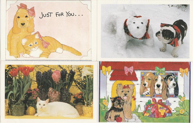(4 cards) Pets Just For You - Cats Dogs - North Shore Animal League