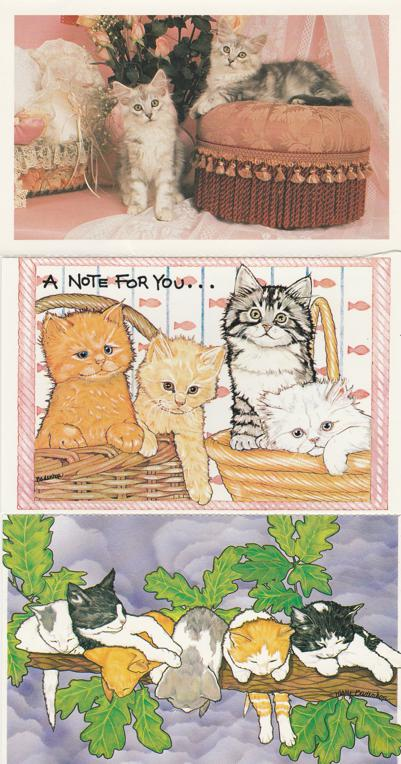 (3 cards) Cute Kittens - Cats - North Shore Animal League