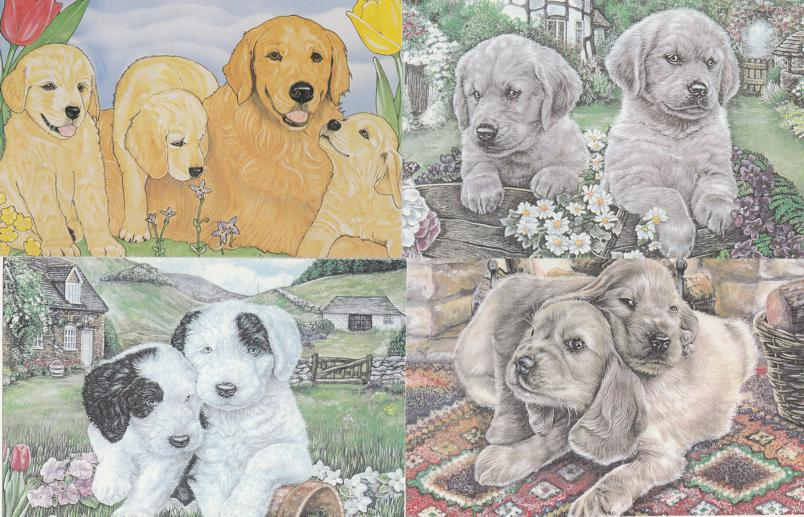 (4 cards) Puppies and Dogs - North Shore Animal League