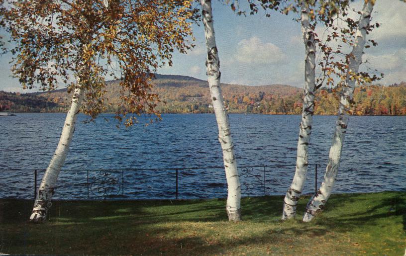 Lake Flower and White Birch Trees - Saranac Lake, Adirondack Mountains, New York - pm 1967 at Tupper Lake