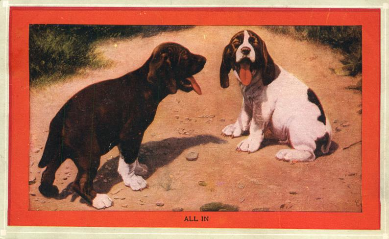 Happy Dogs are All In - Animals - pm 1911 at Earlham Iowa - Divided Back