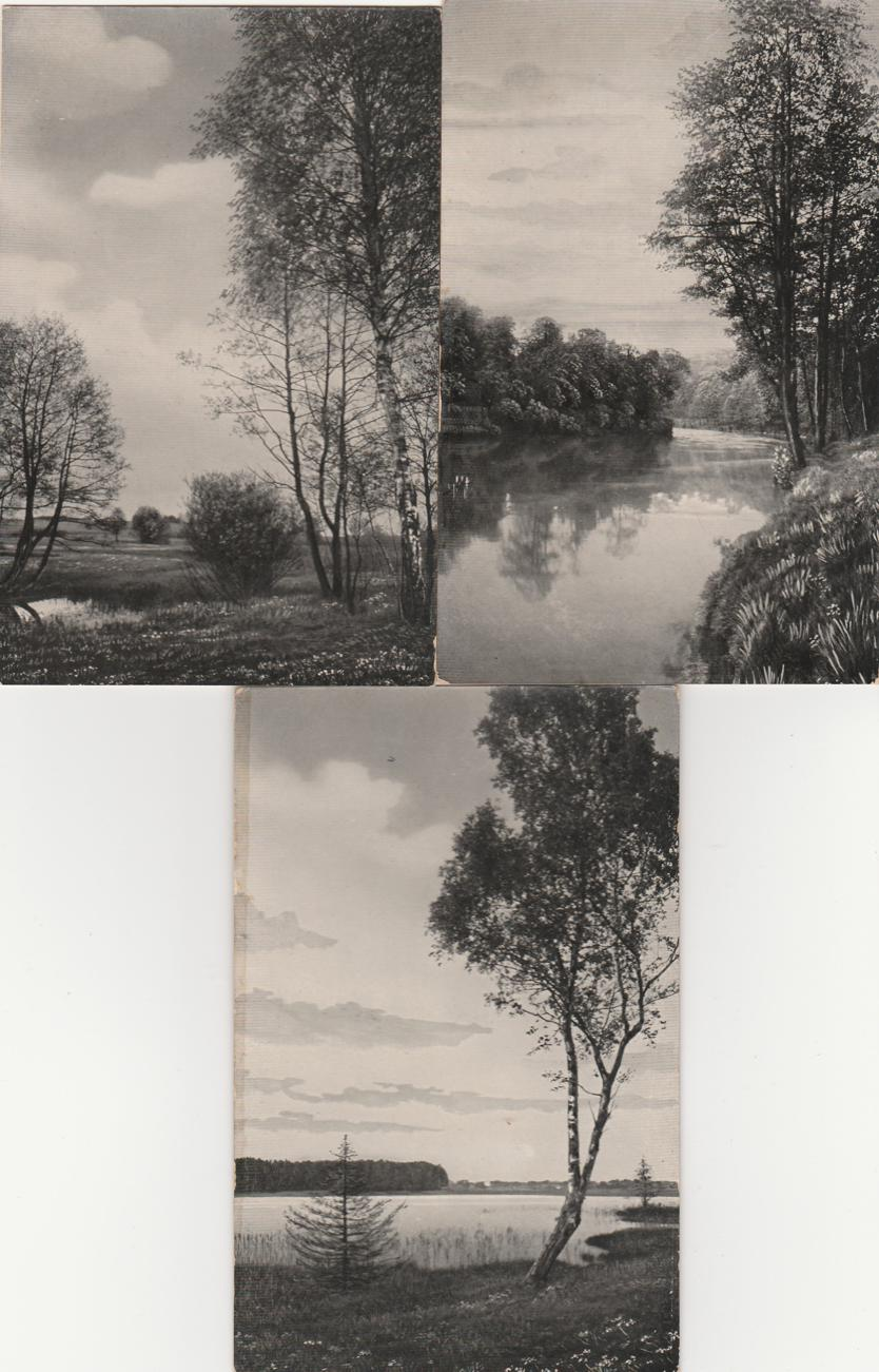 (3 cards) Rural Scenes - Pond - River - Lake - Printed in Germany - Divided Back
