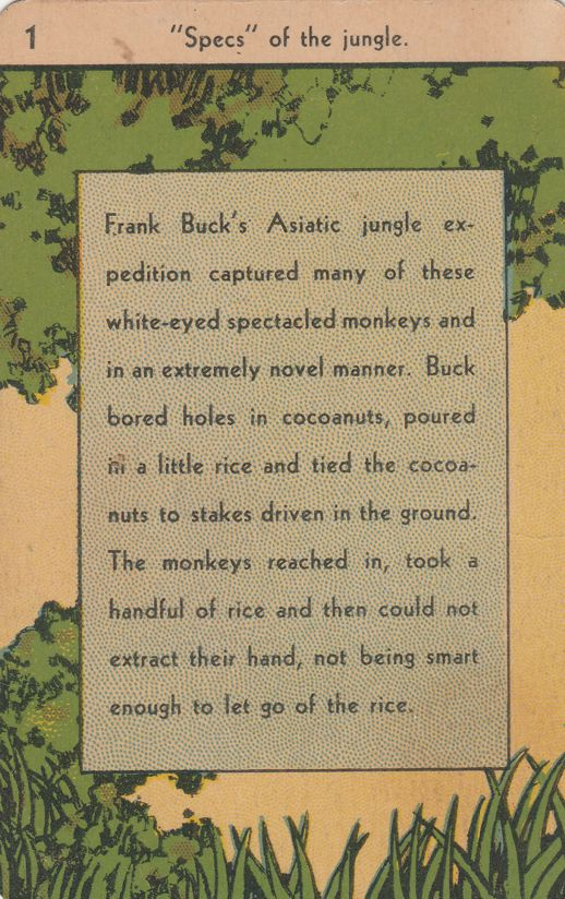 Frank Buck Trading Card - Hunter and Animal Collector 1884-1950