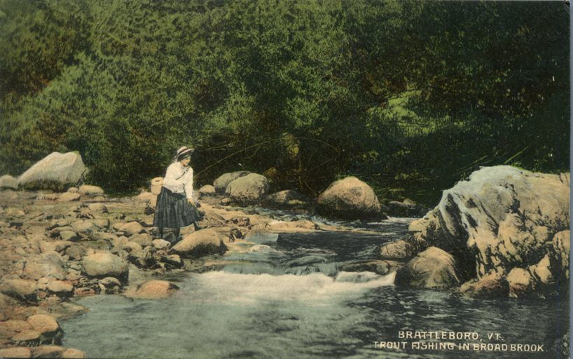 Lady Trout Fishing in Broad Brook - Brattleboro, Vermont - Divided Back