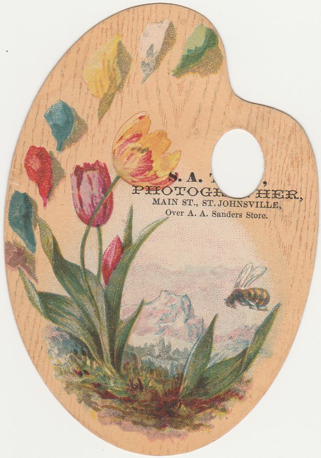 Palette Style Victorian Die-Cut Trade Card - Tulip Flowers - Photographer at St Johnsville NY