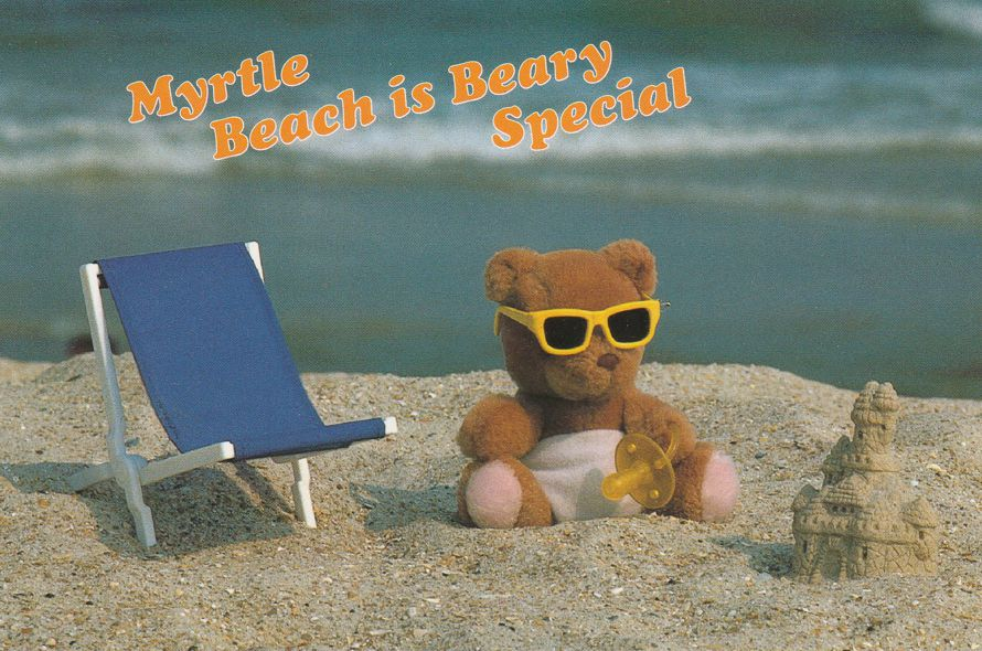 Greetings from Beary Special Myrtle Beach, South Carolina