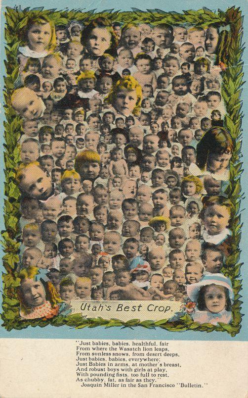 Multiple Babies Greetings - Joaquin Miller Poem - Utah's Best Crop - Divided Back
