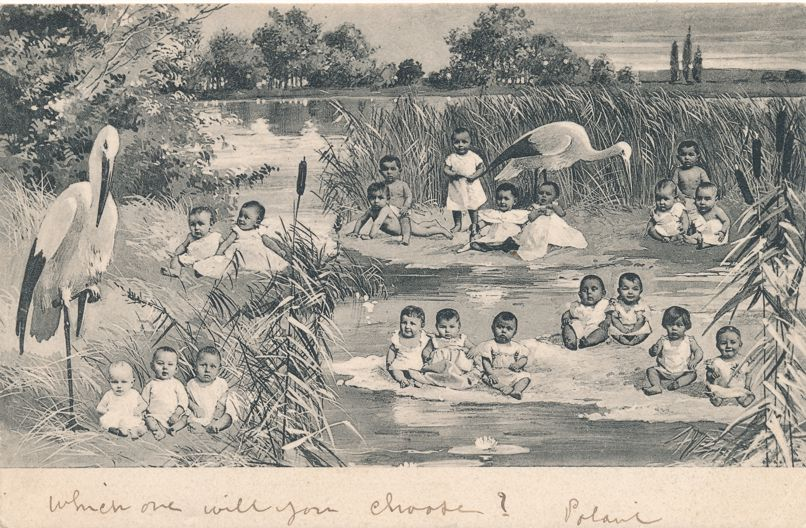 Multiple Babies with Storks among the Bullrushes - Greetings - pm 1902 at Heyst-Sur-Mer Belgium - Undivided Back