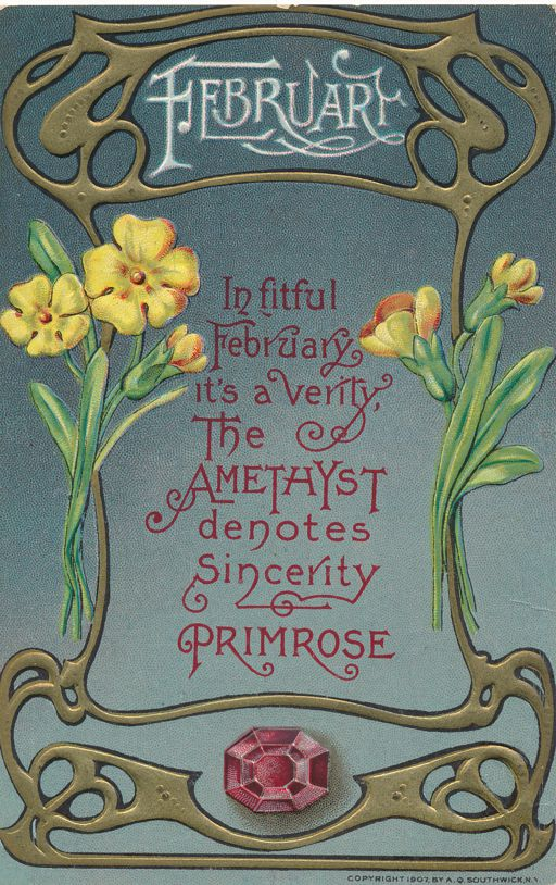 Birth Month February - Birthstone Amethys - Flower Primrose - Divided Back