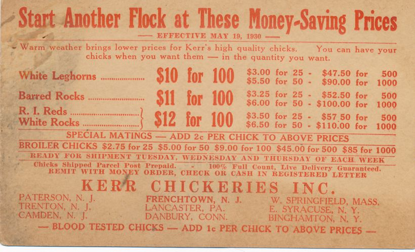 Advertisement for Baby Chickens - Kerr Chickeries, Frenchtown, New Jersey - pm 1930