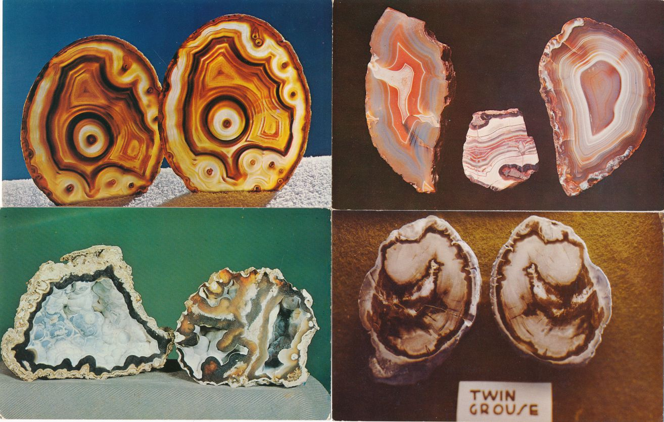 (4 cards) Brazil Agate - Agatized Coral - Agate - Petrified Wood - Rocks
