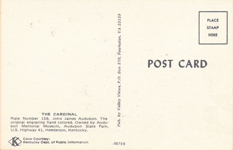 Cardinal Audubon #159 - Audubon State Park - Henderson, Kentucky