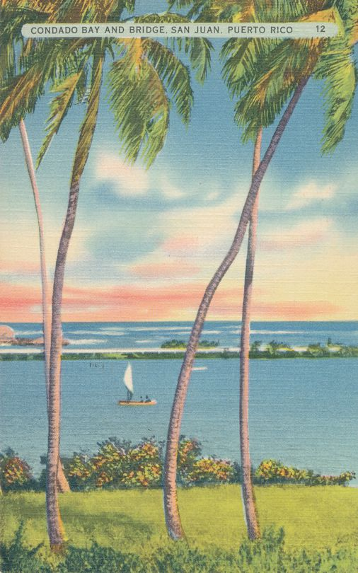 Palm Trees at Condado Bay - San Juan, Puerto Rico - Linen Card