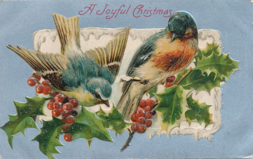 Joyful Christmas Greetings - Birds and Holly - Divided Back