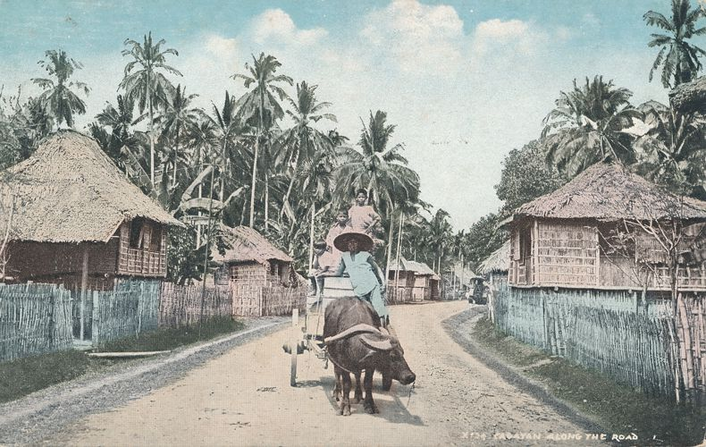 Ox Cart Along The Road - Cagayan Region of the Philippine Islands - Divided Back