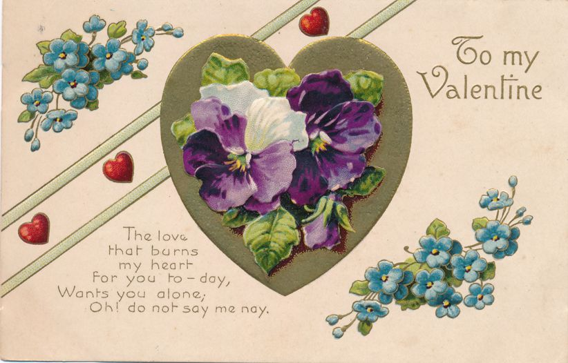 Violets from the Heart that Burns for You - Valentine Greetings - pm 1910 at Corunna - Divided Back
