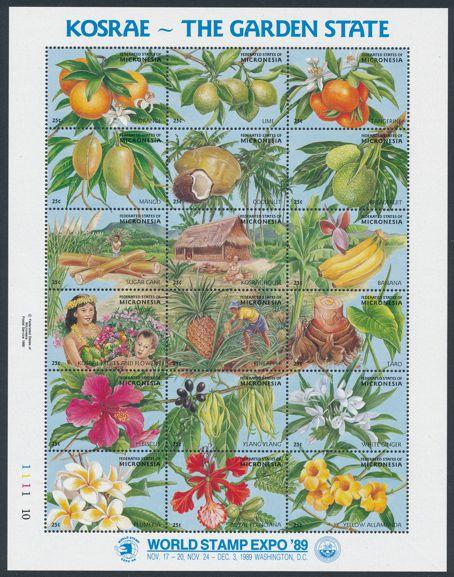 Micronesia sc# 103 MNH Full Sheet of 18 Stamps - Kosrae Garden State